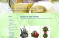Jaya Premium Giftshoppe