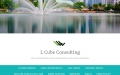 L Cube Consulting